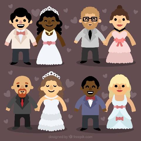 وکتور عروسی 14